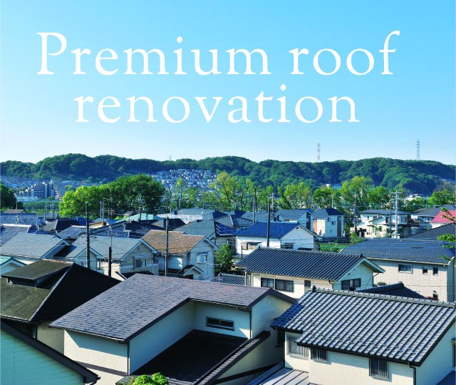 Premium roof renovation